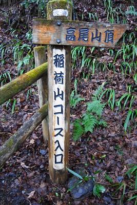 ・・・今日も稲荷山コースという...