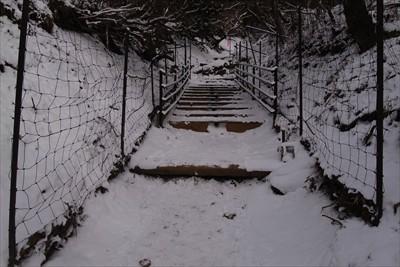 鹿避け階段を越えるとあと少し。...
