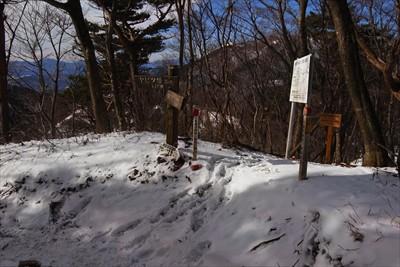 春岳山への分岐。さきほどより踏...