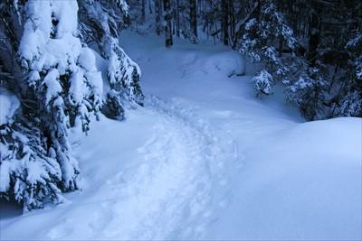 ここから山道になる。...