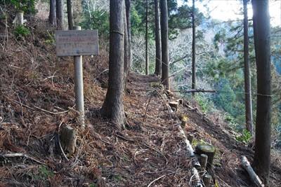 純粋に林業のためだけの道なのだ...