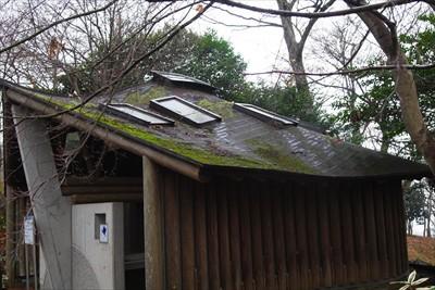 屋根のアールが何とも言えない。...