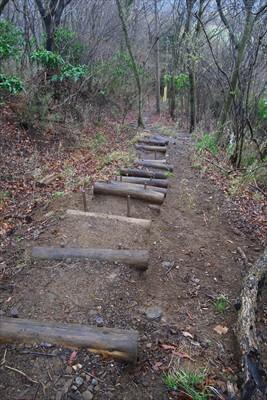 うぅ、、、滑りやすそうな階段・...