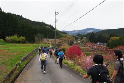再び舗装道に出て、日本の原風景...