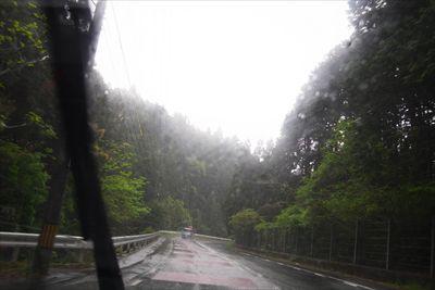 途中、ものすごく雨が降ってきた...
