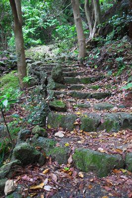 苔むした石の階段を登る。...