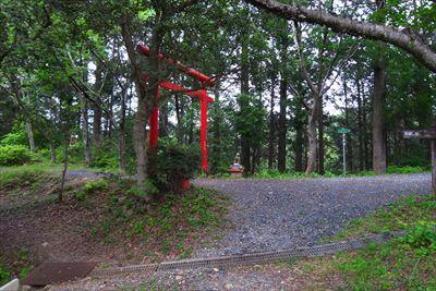 木々の間に赤い鳥居が見えた。...