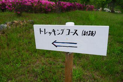 ・・・左側は副路か・・・...