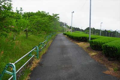 ・・・右側はこんな道・・・...
