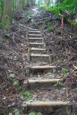 細い尾根に階段が付けられている...