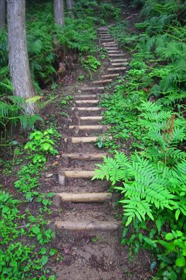 急な階段が続く・・・。...