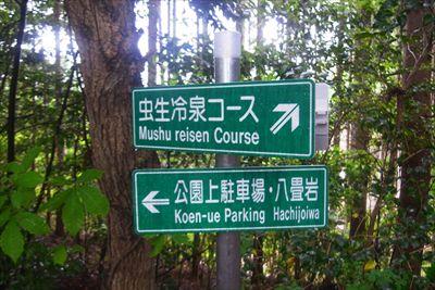 右手前方向は野草の小道というル...