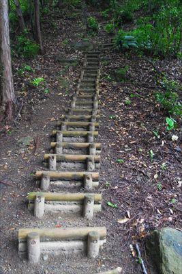 ・・・再び階段がある。林道を歩...