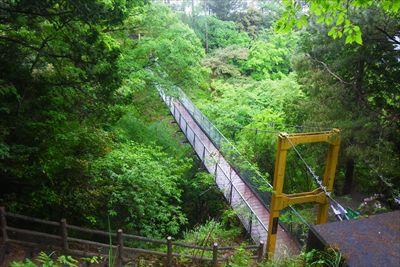 吊り橋が見えた。先ほどの声はこ...