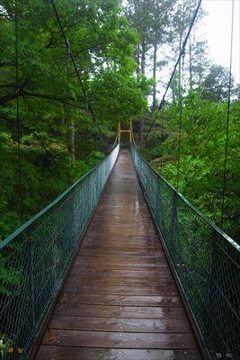 吊り橋を渡る。...