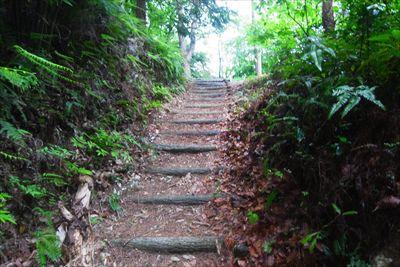 階段を登ると・・・...