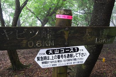 山頂まで1.9km。...