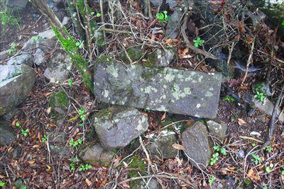 登山道を少し離れた所に怪しい石...