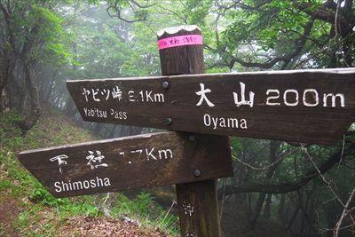 ヤビツ峠まで2.1km。分岐し...