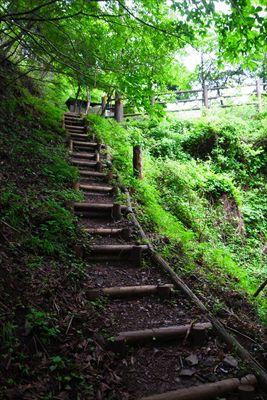 この階段を登ればゴールです。...