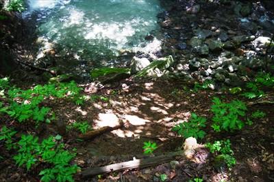 的様のすぐ下流は滝になっていて...