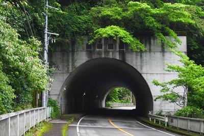 いくつかのトンネルを潜ります。...