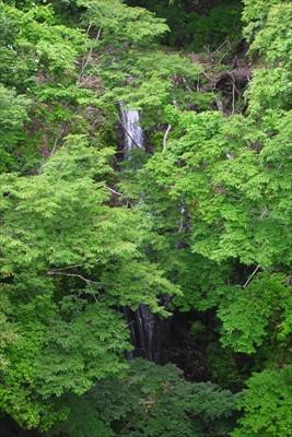 滝壺橋からちょっとだけ見えた滝...