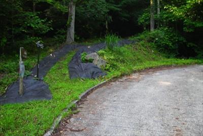 分岐。林道をハズレて左の登山道...