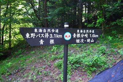 青根分岐までは1.6km。意外...