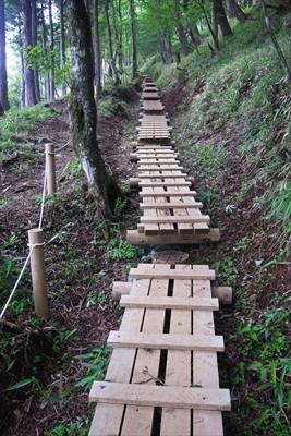 木道。歩幅が合えば歩きやすいけ...