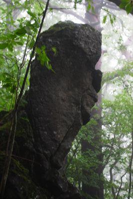 この岩、右を向いた人の横顔に見...