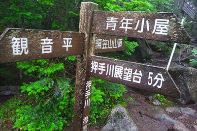 ここで編笠山への直登ルートと巻...