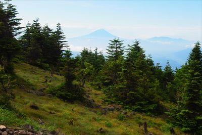 遠くに富士山も見えた。これなら...