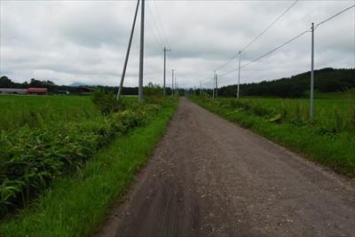 真っ直ぐ農道を歩く。...