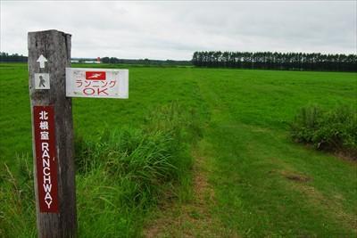 ・・・牧草地を突っ切る。...
