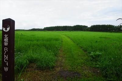 牧草地を突っ切って・・・...