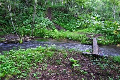 おぉ、ここがケネカ川か。結構水...