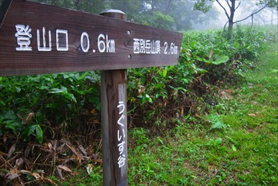 登山口から600mでうぐいす谷...