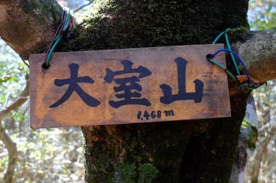 ・・・そこが山頂だった。う〜む...