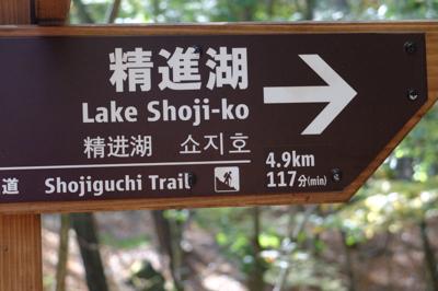 精進湖まであと5km。整地され...