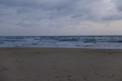 ・・・日本海! でも、だっ誰も...