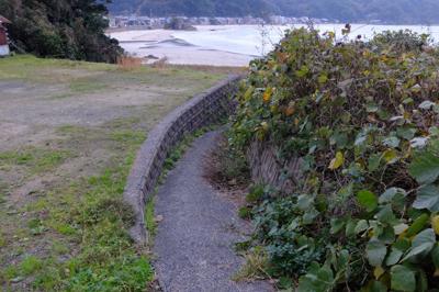 浜辺に出られそうな細い道があっ...