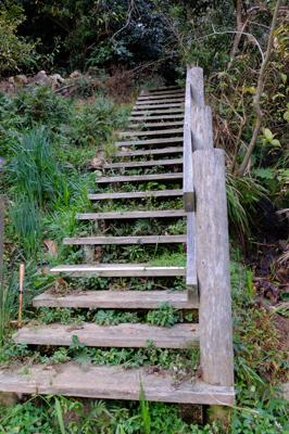 階段を登って・・・...