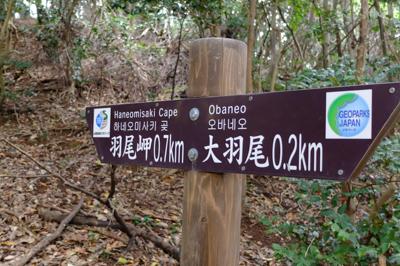 羽尾岬まで700m・・・。でも...