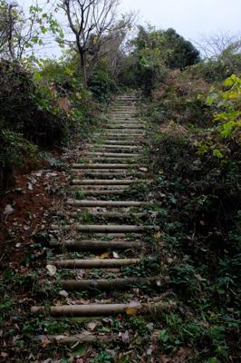 うっ、登りだ・・・。このルート...