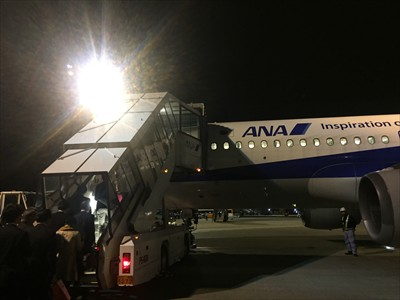 今回搭乗する機体はエアバスA3...