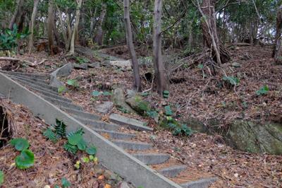しかも階段ばっか・・・。...