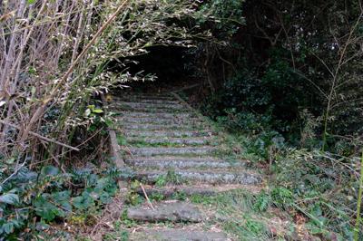 ・・・登りも階段。...