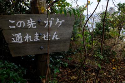 ・・・柵をまたいで崖際まで行く...
