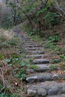 また階段・・・。...